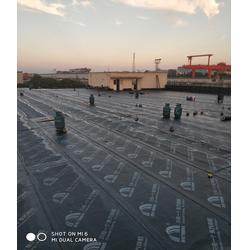 屋面防水怎么收費-防水-藍盾防水圖片