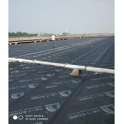 彩钢瓦屋面防水-防水-南京蓝盾防水(查看)图片