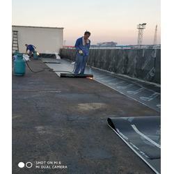 防水-南京蓝盾防水-彩钢瓦屋面防水图片