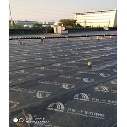 防水-藍盾防水-鋼結構屋面防水圖片