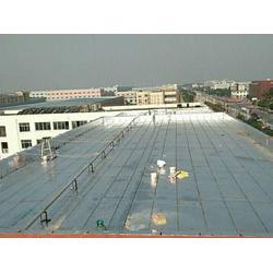 屋面防水-蓝盾防水-南京屋面防水做法图片