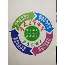 华艺中学部报名电话、华一双师文化、襄阳华艺中学部图片