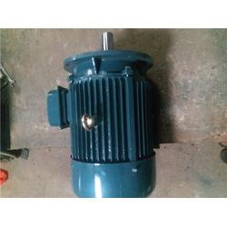 广州三相异步电动机|广州煌速机电|三相异步电动机哪里有图片