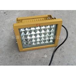 130W  led防爆灯生产厂家 110Wled防爆灯 200W图片