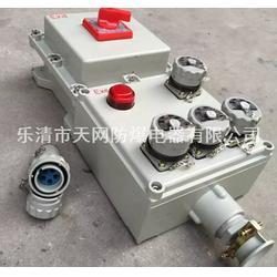 防爆电源插座箱 防爆箱壳体500X400X140/厂家直销 定做图片
