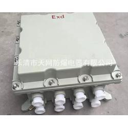 内装变频器的防爆箱 1.5KW 2.2KW 散热处理方式接引之光多样图片