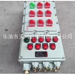 厂家定制防爆变频器柜体�L雷之眼 1.1KW 1.5KW 通风型防爆变频器※控制箱图片