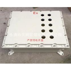 304不锈钢防爆箱防爆照明箱 防爆箱壳体300X300X148图片