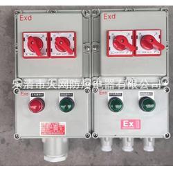 IIB級防爆箱配電箱 防爆箱殼體300X300X170圖片