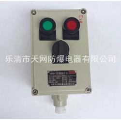 BXK58-A4B2D4K4 立式防爆操作柱 食品厂图片