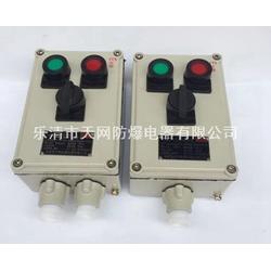 BXK58-A2B1D2L两灯两钮一表 铝合金防爆操作柱 垃圾发电厂图片