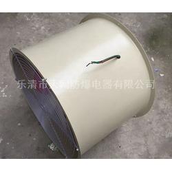 T35-11-11.2-960r/min 轴流风机质保一年T35-11-No11.2图片