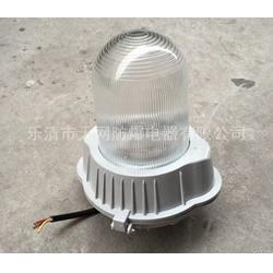 GC101-N150/150W钠灯 壁挂式防水防尘工矿灯图片