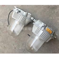 FAD-T-N150/150W 防水防尘防腐工厂灯图片