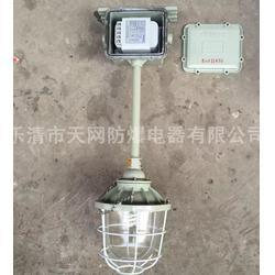 防爆照明灯  BAD-L100h1Z图片