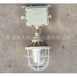 防爆灯厂家  BAD52-L70xZ防爆吸顶灯图片