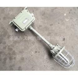 防爆灯  BAD51-J65x防爆节能灯图片