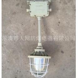 工廠燈 防爆燈  BAD52-N110b2Z防爆鈉燈圖片