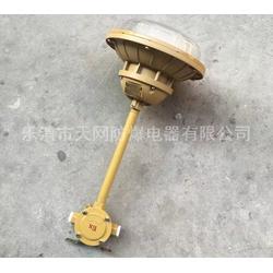 三防灯 SBF6103-YQL50C2吸壁式防水防尘灯电厂图片