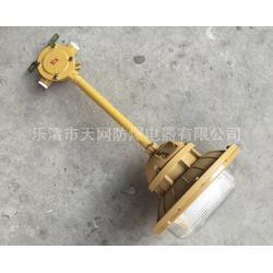 三防灯 SBF6103-YQL50C2三防工厂灯油漆厂图片