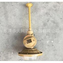 SBD1102-YQL40D护栏式 防爆无极灯 供应化肥厂图片