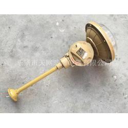 SBD1102-YQL40C1 粉尘防爆灯 供应炼油厂图片