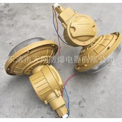 SBD1103-YQL50E法兰灯 防爆低频无极灯 供应油漆库房图片