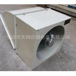 BWXE-700D6-19000m3/h 边墙式防爆轴流风机供应图片