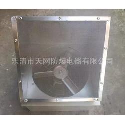 BWXE-300D4-0.18KW 防爆边墙风机配防虫网图片