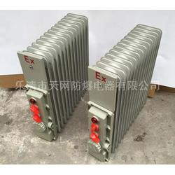 防爆油汀厂家 13片 2.5KW/220V 供应水泥厂图片
