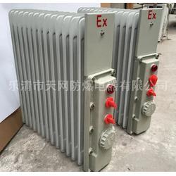 密闭型防爆油汀 9片/1.5KW/220V 供应钢铁厂图片