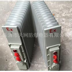 防爆电热油汀 BDR-2/11YR 供应油泵房图片