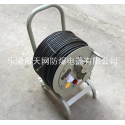 防爆移动电缆盘 380V/2x32A/50米图片