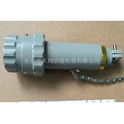 三芯防爆插头插座 15YT-3J 15GZ-3K 250v厂家 防爆单相三极插头插座图片