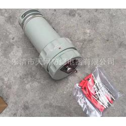 防爆三芯插头插座 30YT-3J 30YZ-3K 250v厂家 防爆单相三极插头插座图片