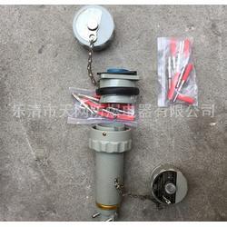 防爆插头防爆插头插座报价 GTZ-60A图片