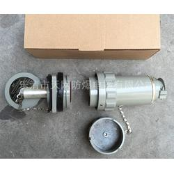 单相三极防爆插头插座 60YT-3J YZ-3K移动式厂家 工厂专用防爆插头插座图片
