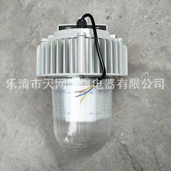 FAD-E70g三防吊灯 三防壁灯图片