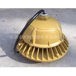 FAD-E90g三防吊灯 防眩泛光LED灯图片