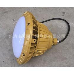 FAD-E20g 防水防尘防腐LED灯图片