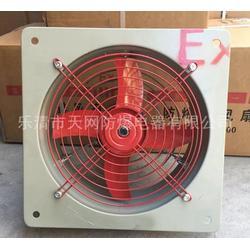 BFAG-600 仓库用防爆排风扇图片