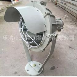 防爆投光照明灯 HRT51-N150  射灯图片