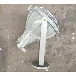 防爆投光灯生产厂家 BLT56-L100W 防爆灯图片