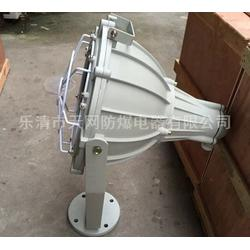防爆探照灯 BTD53-N110Z  防爆投光灯图片