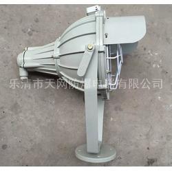 防爆投光灯生产厂家 BAD5050-L70Z  防爆灯图片