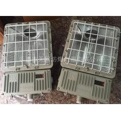 分体式防爆泛光灯  BAT52-N1000图片