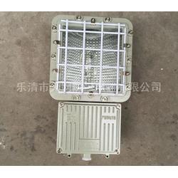 防爆泛光灯生产厂家  BTD-L175W图片
