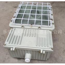 防爆泛光灯厂家直销  HRT52-N110图片