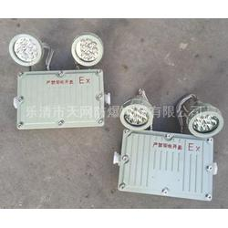 BLJ56-2X3W 防爆型应急照明灯图片