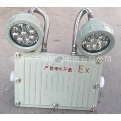BAJ52-6B 防爆应急灯自带蓄电池图片